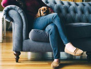 Umzugstypen: Frau mit Hund
