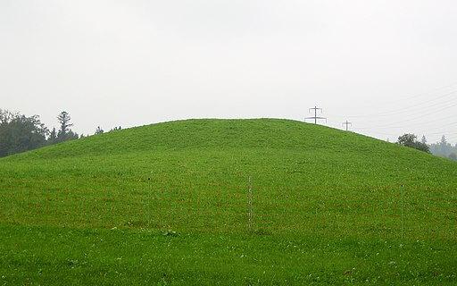 Grabhuegel Rohbank in Wetzikon. Es handelt sich dabei um einen praehistorischen Grabhuegel.