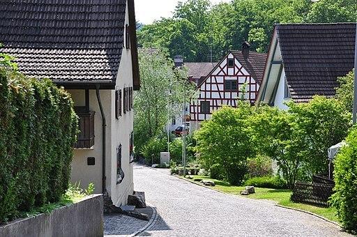 Altburg in Regensdorf mit alten Häuser und Stäuchern.