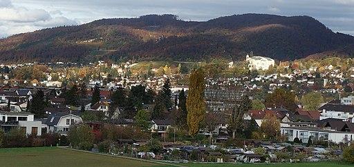 Von Aesch, Kanton-Basellandschaft. Ausblick nach nach Arlesheim, Goetheanum, Dornach